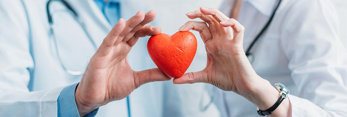 Healthcare professionals holding up heart