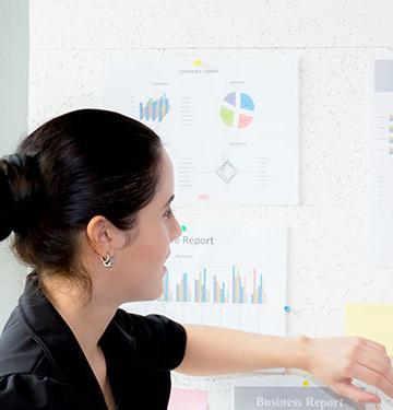 Economists analyzing data